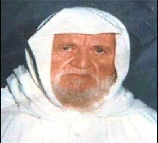 nasyruddin al albani - 171. Мухаддис века: Насыруддин аль-Альбани.